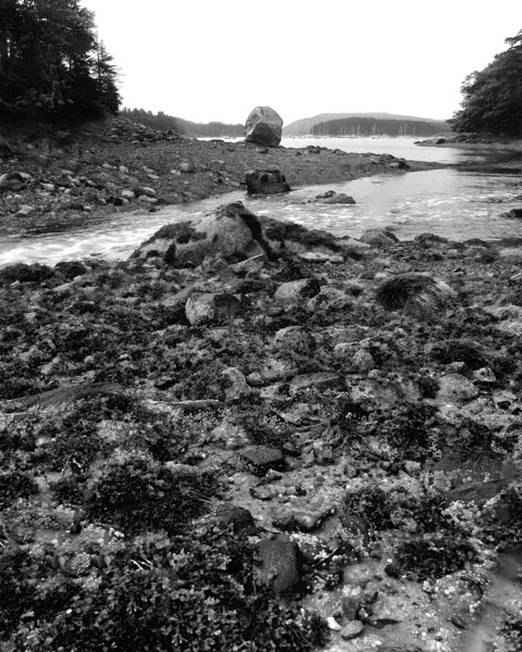 Maine Inlet With Boulder