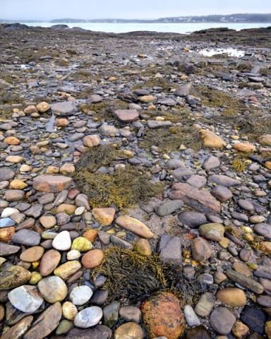 Shoreline Rocks