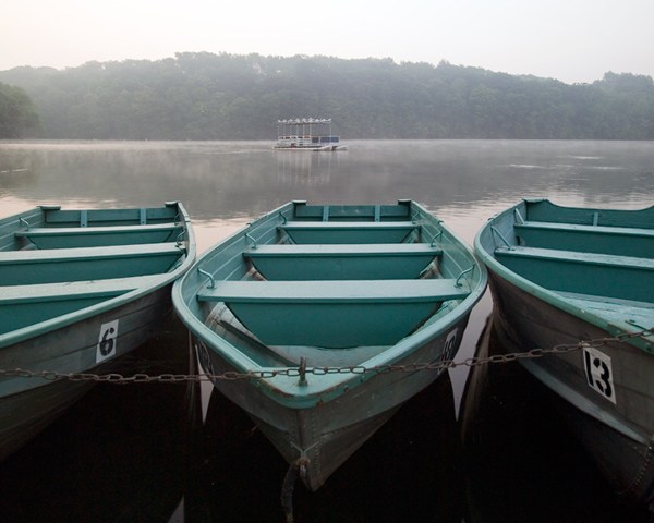 Rowboats and Ferry